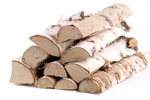 Brennholz birke